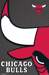 Chicago Bulls  nba