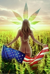 Freedom cannabis weed marijuana