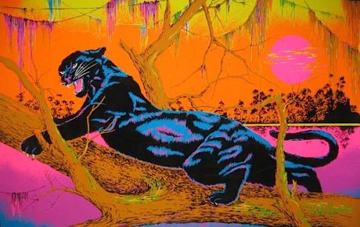 Jungle Cat Blacklight   wpbl