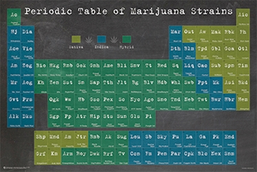 Periodic Table of Marijuana Strains weed, pot, reefer, marijuana, cannabis